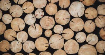 Holzspalter gebraucht kaufen