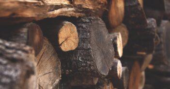 Holzspalter Test und Ratgeber
