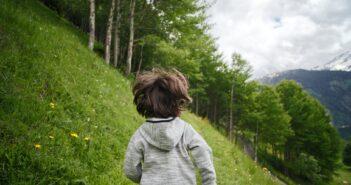 Stihl Kinderkettensäge Test und Erfahrungen