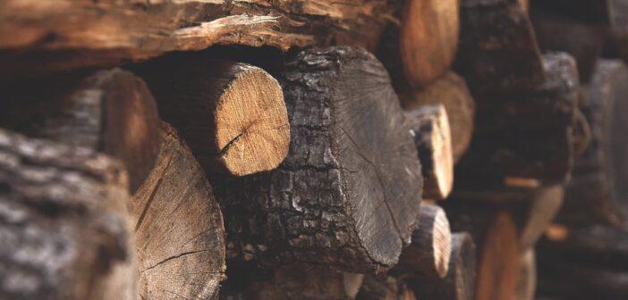 Holzspalter Vergleich - Holzspalter Ratgeber
