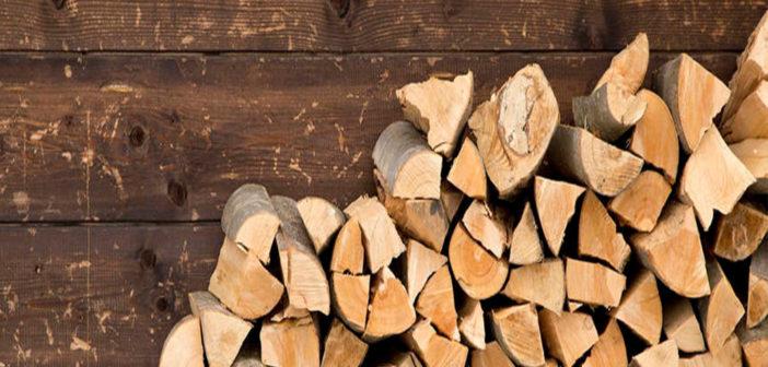 Brennholz machen Tipps Anleitung